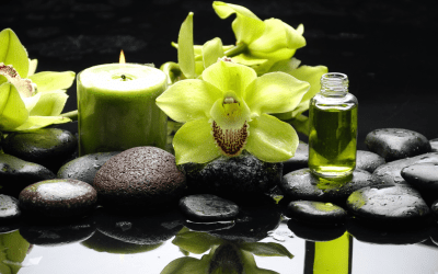 Why Are Holistic Therapies So Effective in Addiction Treatment?